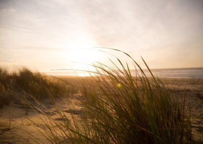 Dune Pin Sec